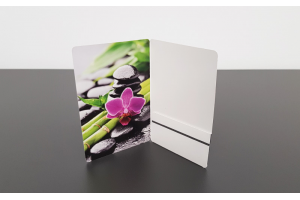Card Case - Folded vertical