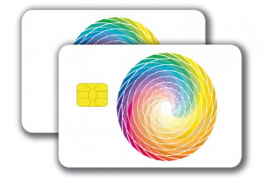 Chipcard SLE5542 -  4/4 colored